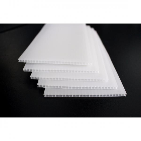 PP中空板 S径抗压缓冲塑料隔板 聚丙烯瓦楞空心板 等中空板制品
